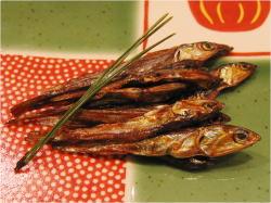 祝い肴3種から、おせち料理作りをはじめてみませんか?